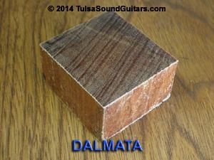 dalmata block-300