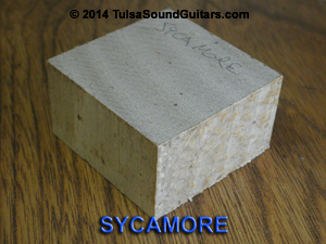 sycamore block-300